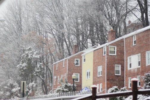 2013 Snowday 2